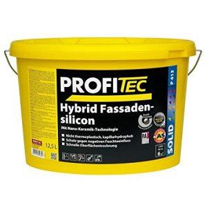 PROFITEC Hybrid Fassadensilicon fasadiniai dažai